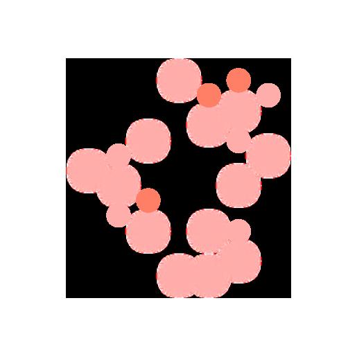 Interactómica