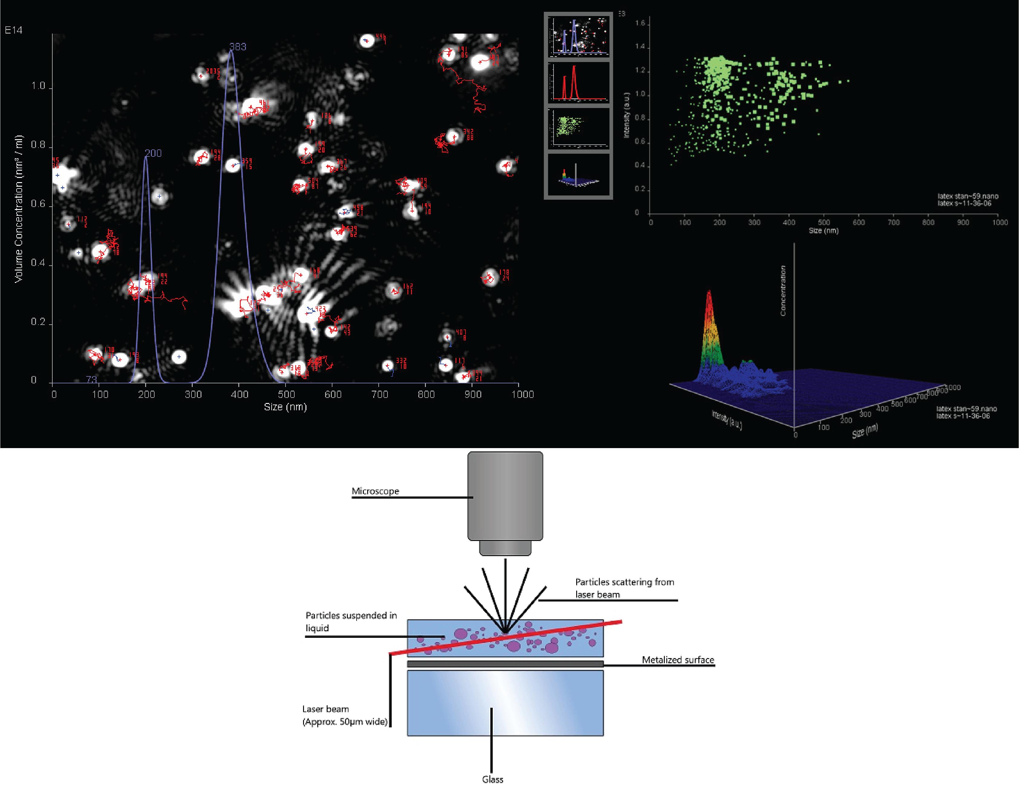Gráficos resultantes do equipamento nanosight - Técnica NTA
